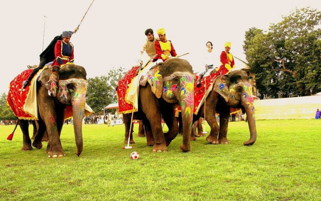 Vibrant and Royal Elephant Festival in Jaipur, India